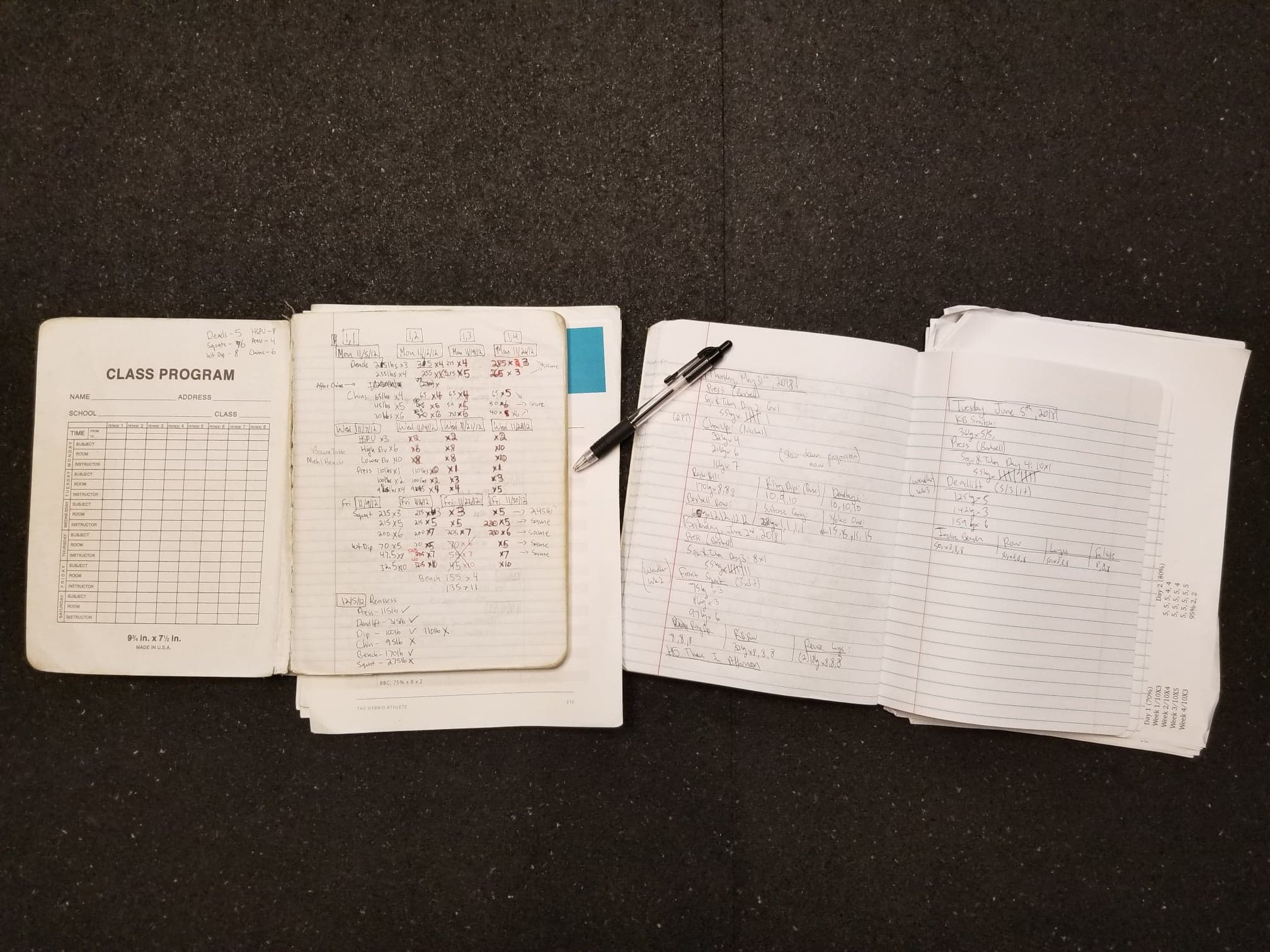 Aaron's Training Journals